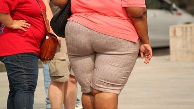 Artículo Obesidad y cáncer