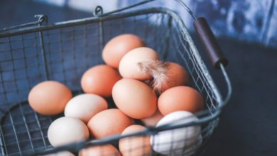 Artículo Los huevos en nuestra alimentación